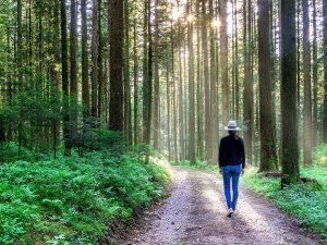 PSICOLOGÍA COGNITIVA | MARTA VIDAL | PSICÓLOGA EN VALENCIA Y TORRENTE